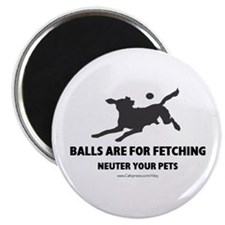 "Neuter Your Pets 2.25"" Magnet (10 pack)"