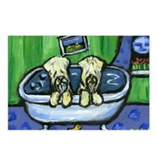 Wheatens in tub Design Postcards (Package of 8)