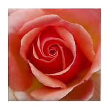 Pink Rose Tile Coaster