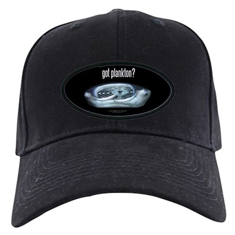 Got Plankton?: Black Cap