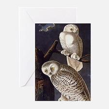White Snowy Owls Vintage Audubon Wildlife Greeting