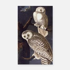 White Snowy Owls Vintage Audubon Wildlife Rectangl