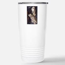 White Snowy Owls Vintage Audubon Wildlife Travel M