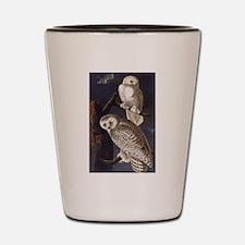 White Snowy Owls Vintage Audubon Wildlife Shot Gla