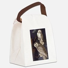 White Snowy Owls Vintage Audubon Wildlife Canvas L