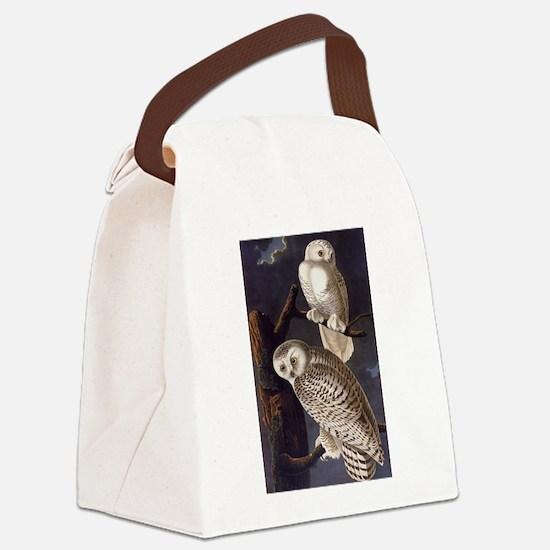 White Snowy Owls Vintage Audubon Wildlife Canvas L