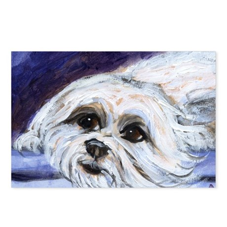 adorable MALTESE portrait Postcards (Package of 8)