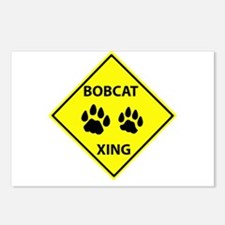 Bobcat Crossing Postcards (Package of 8)