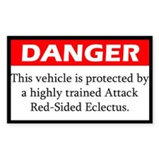 Danger Attack Red-Sided Eclectus Decal