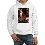 Accolade / Weimaraner Hooded Sweatshirt