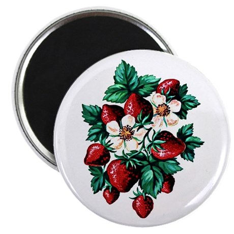 Strawberry Fields Magnet