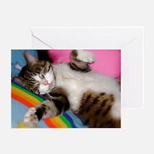Sweet Dreams Greeting Cards (pk Of 20)