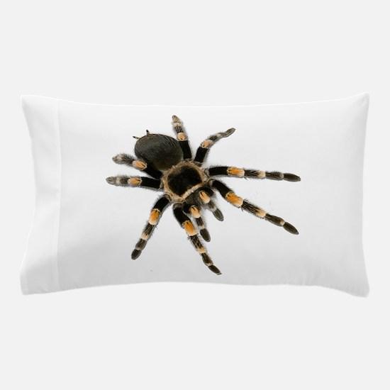 Tarantula Spider Pillow Case