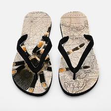 Spider Map Flip Flops