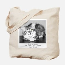 Insincere Cat-and-Quote Tote Bag