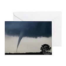 Cute Stormers Greeting Card