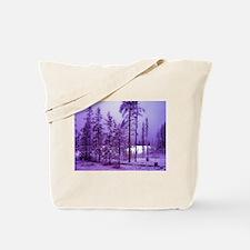 Funny Colorado christmas Tote Bag