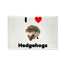 I Love Hedgehogs Rectangle Magnet