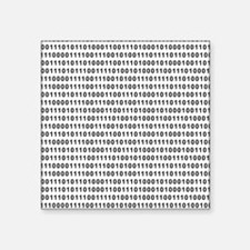 Binary Code 101 Sticker