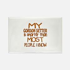 My Gordon Setter is sma Rectangle Magnet (10 pack)