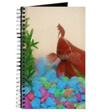 Betta Fish Journal
