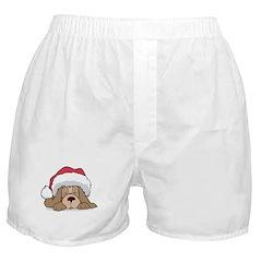 Santa Puppy Boxer Shorts