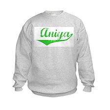 Aniya Vintage (Green) Jumpers