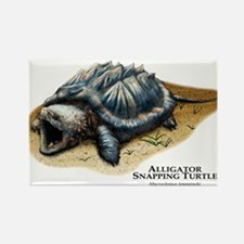Alligator Snapping Turtle Rectangle Magnet