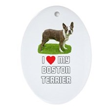 I Love My Boston Terrier Oval Ornament