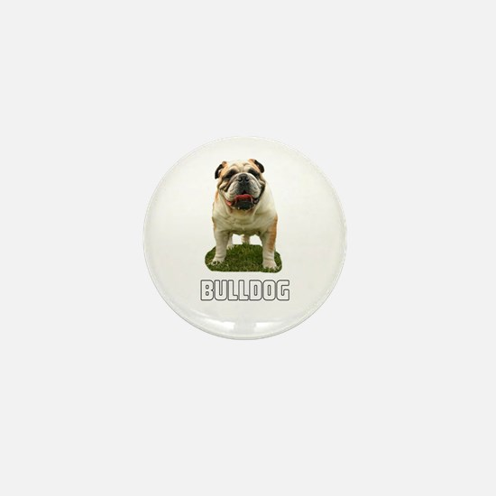 Bulldog Mini Button