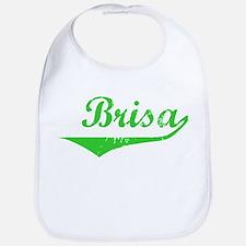 Brisa Vintage (Green) Bib