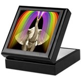 Elephant rainbow Keepsake Boxes