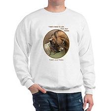 Also Ponies - Sweatshirt