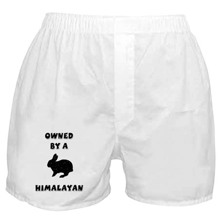 Owned by a Himalayan Boxer Shorts