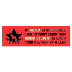 My BOXER is So Evolved - Bumper Bumper Sticker