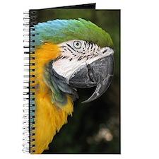 Helaine's BlueOrange Parrot Journal