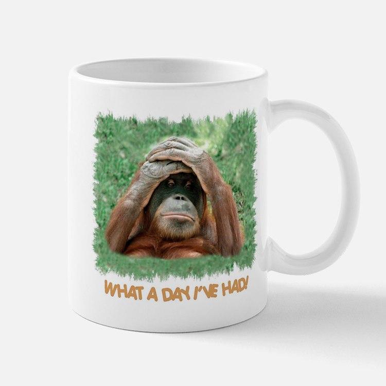WHAT A DAY I'VE HAD! Mug