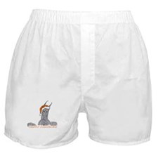 CBlu Happy Holidanes Boxer Shorts