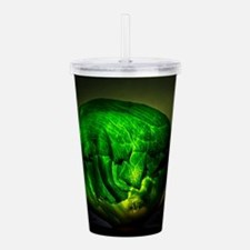 Illuminated Cabbage Acrylic Double-wall Tumbler