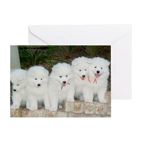 whole gang greeting cards Greeting Cards