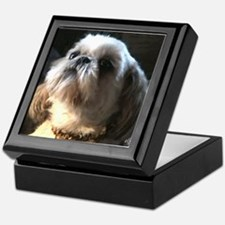 Shih Tzu Puppy Admiration Keepsake Box