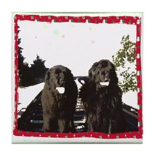 Holiday Newfies Ma & Pa Tile Coaster
