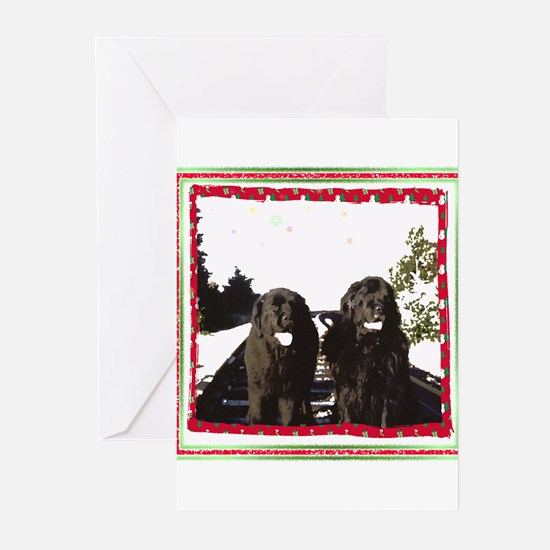 Holiday Newfies Ma & Pa Greeting Cards (Pk of 20)