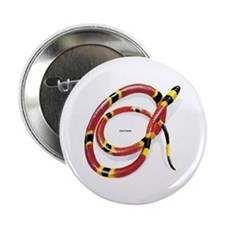 """Coral Snake 2.25"""" Button (10 pack)"""
