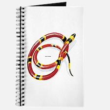 Coral Snake Journal
