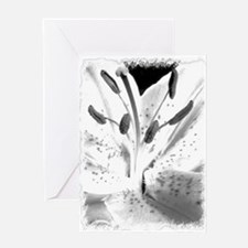 Black & White Lily Close-up Greeting Card