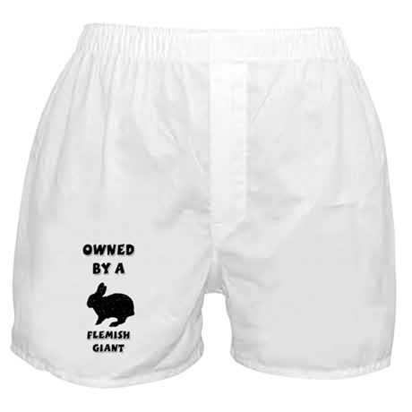 Owned by a Flemish Giant Boxer Shorts