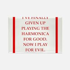 harmonica Magnets