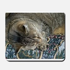 Cat Nap Mousepad