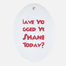 Have You Hugged Your Shane? Oval Ornament